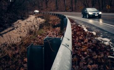 Vai conduzir? Tenha cuidado com as folhas
