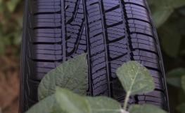Óleo de soja nos pneus? Sim, é muito útil
