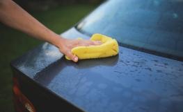 Como eliminar os mosquitos e cuidar a carroçaria